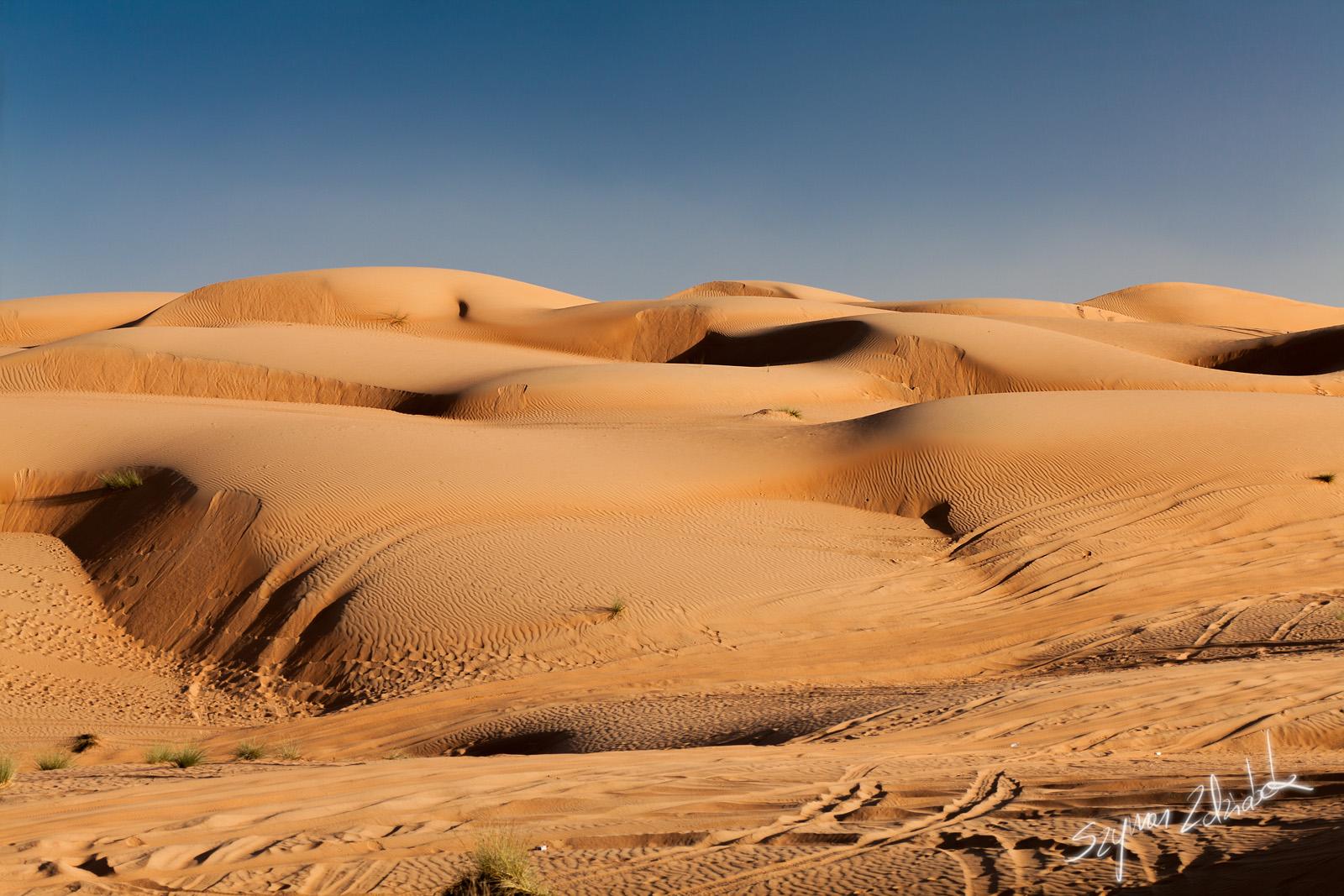 Wahiba Sands Oman  city photo : Pustynię Wahiba Sands odwiedziłem też w roku 2015: http://szymon ...